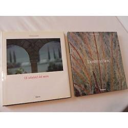 GLI SCHELETRI DEL SACRO + DENTRO UN FIORE 86/87 LIBRO VITTORINO ANDREOLI ELECTA
